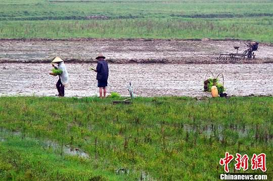China creates artificial rain with drones for first time