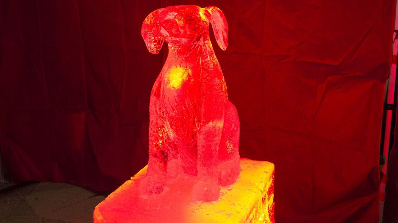 An ice sculpture of a dog.