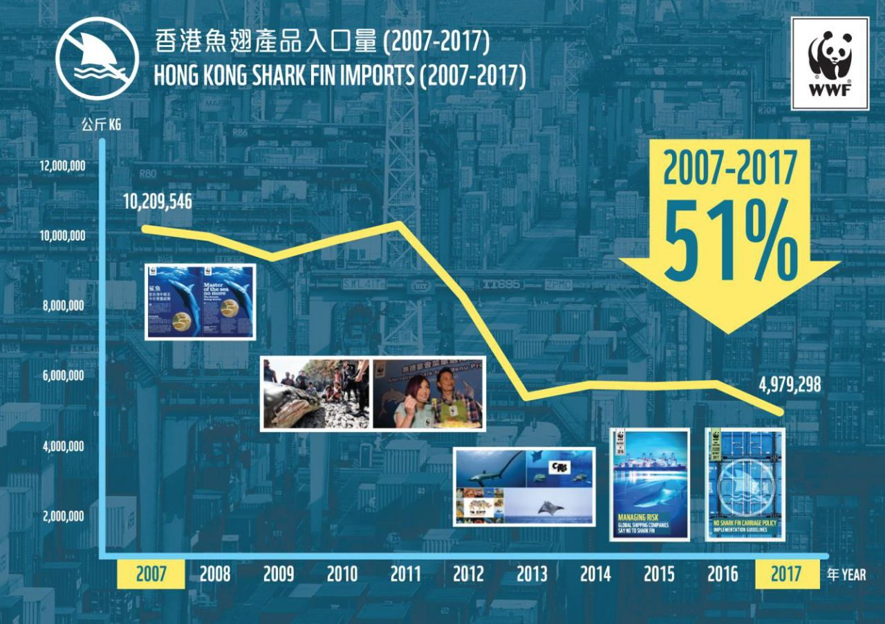 2007-2017 shark fin products import volume.