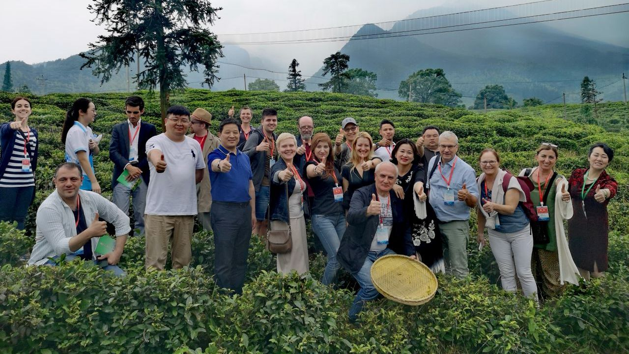 Guests were treated to a visit of some of Jiujiang's 23,000 hectares of tea-planting land.