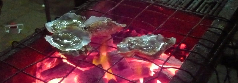 On the streets of Shenzhen, the Grill Kings prepare chicken wings, lamb, vegetables and even oysters (pictured).