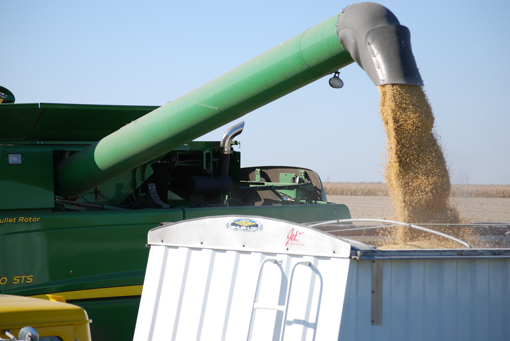 China imposes tariffs on $50bn of US imports, including soybeans