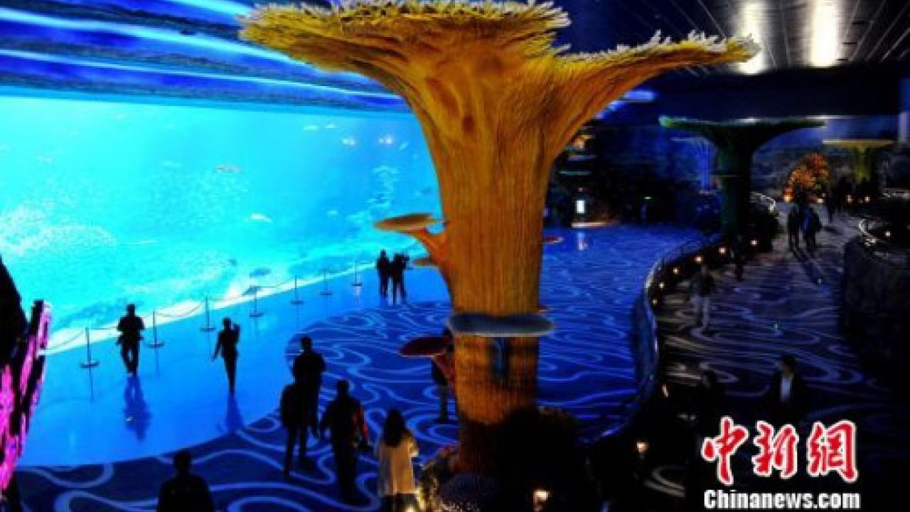 Guangdong Unveils Worlds Biggest Ocean Theme Park - Biggest ocean in the world