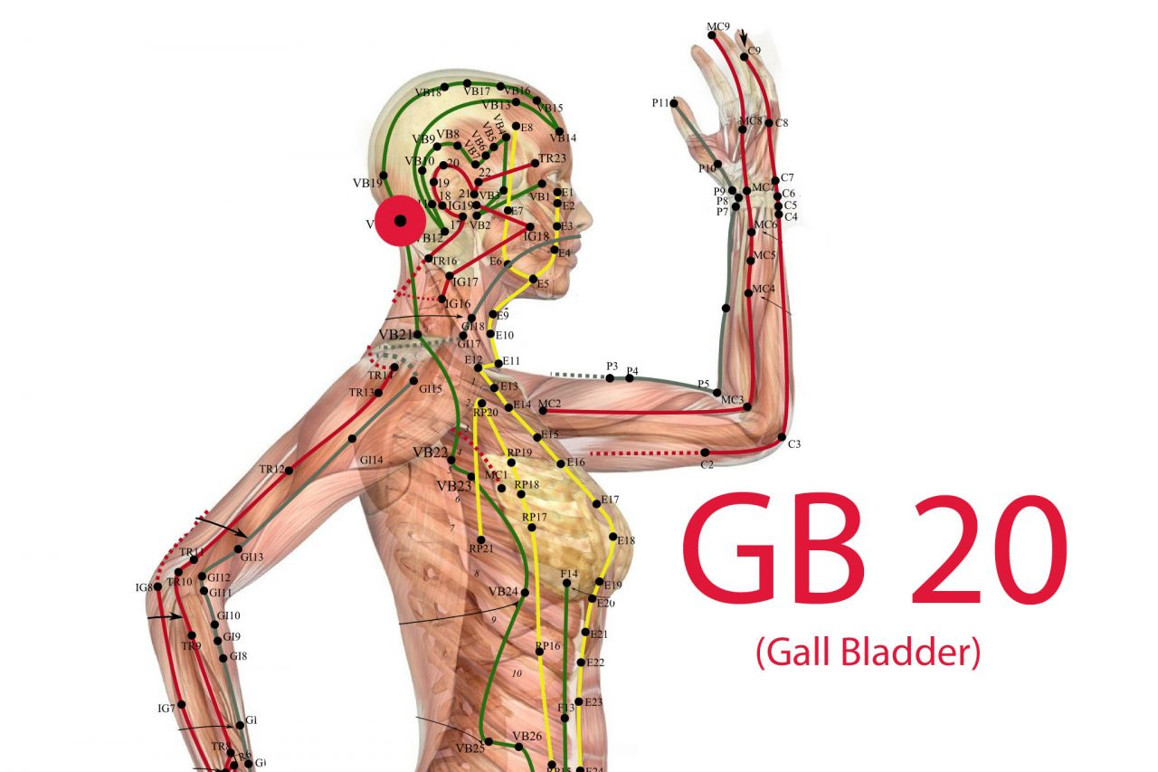 "Also acupuncture point GB 20 (Gall Bladder Meridian) should help getting rid of excess ""wind""."