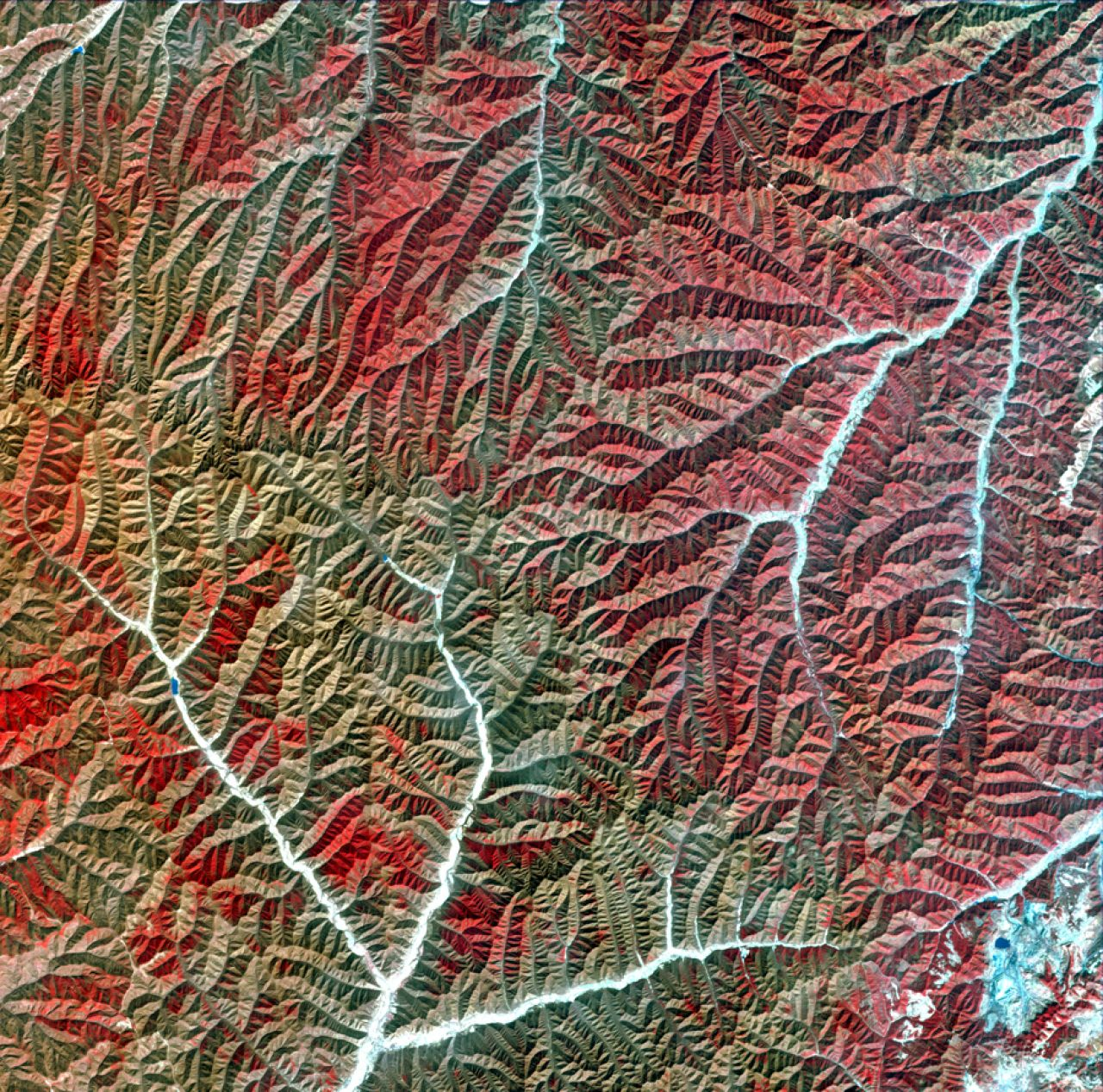 Vegetation and dried rivers of a mountain range in Gansu province, imaged by Gaofen-1, launched in 2013.