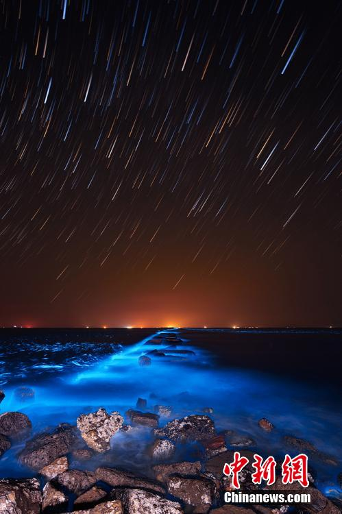 dark beach at night glow in the dark seawater turns dongying beach avatar like
