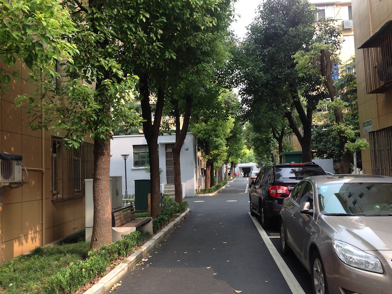 Summer in a residential district of Pingdu