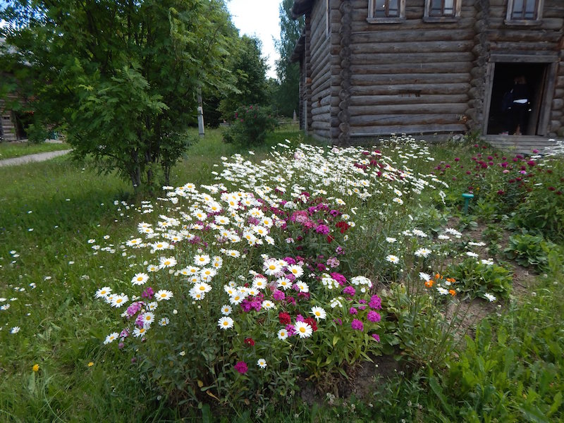 Summertime, when you leave a city to save your soul amid natural beauty of a Russian village