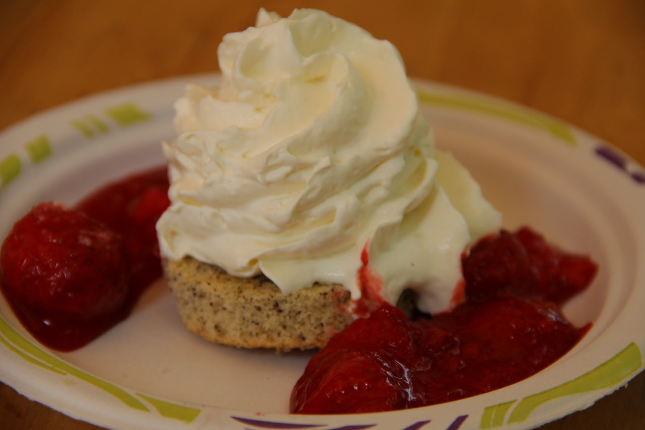A fresh dessert of strawberries, mascarpone whipped cream and cake completed Bistro Tabačka's presentation.