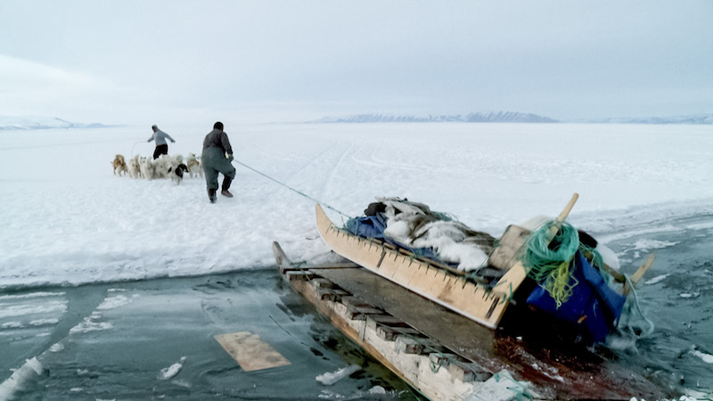 Seal hunting over land has proven to be more difficult in recent years given the shifting glacial landscape