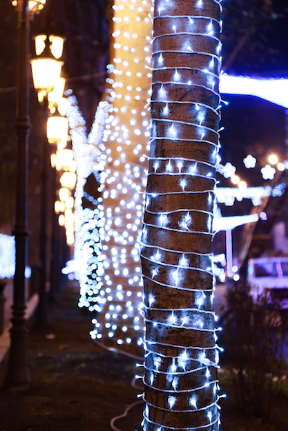 A tree lit up with Christmas lights in Tbilisi
