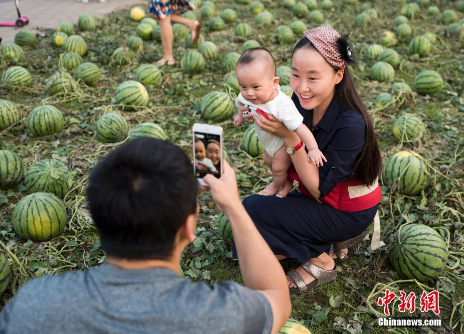 A family was taking photo with the watermelons in China Central Academy of Fine Arts on Thursday.