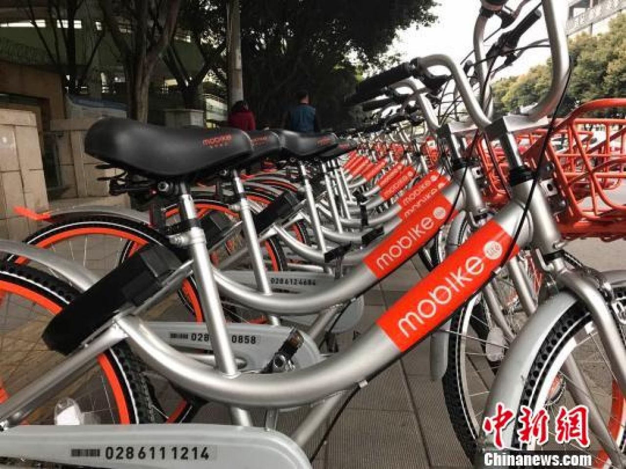 China's Mobike attracts $600m to help it go global