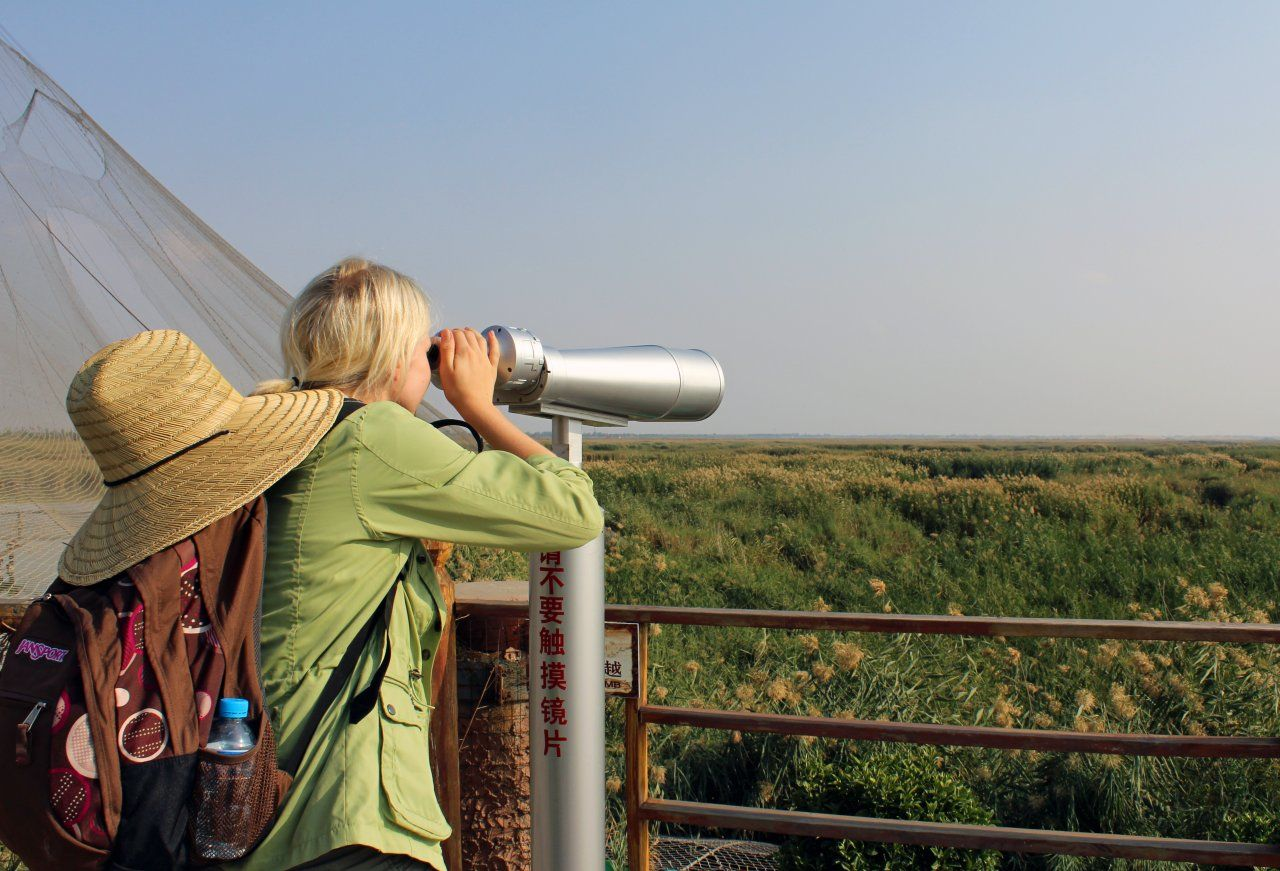 China is the perfect birding destination