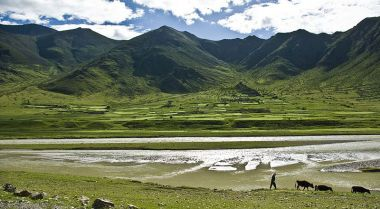 Tibetans are an elevated minority