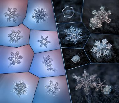 The icy beauty of snowflakes captured by Alexey Kljatov