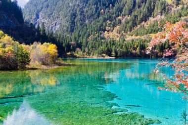 Jiuzhaigou to partially reopen to tourists on March 8
