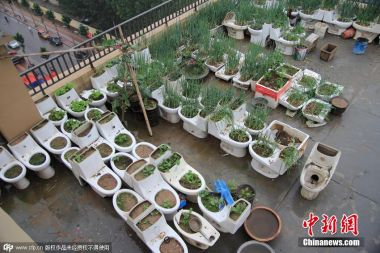 Man uses rooftop toilets to grow vegetables