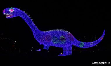 Dolphins and dinosaurs light up Dragon Boat Festival