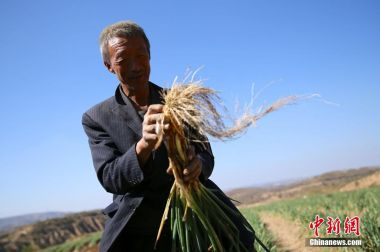 China distributes $13bn from 2019 poverty alleviation fund