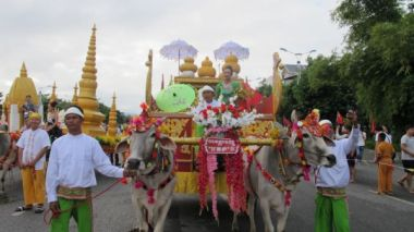 China-Myanmar friendship carnival opens with ox-drawn floats