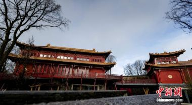 Dutch zoo builds luxury Chinese palace for giant pandas