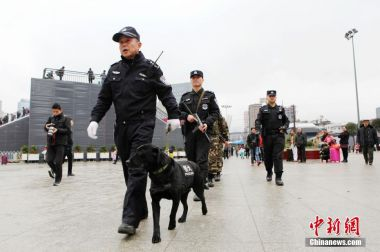 Veteran police dog to retire after Chinese New Year