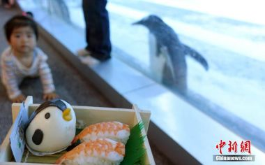 Penguin-themed restaurant opens in Beijing