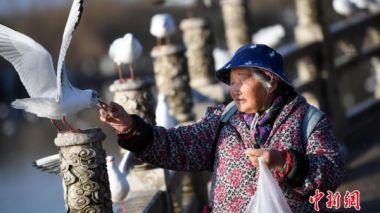 China's elderly population continues to rise, with 241 million now 60 or over