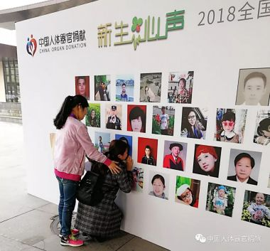 Chinese organ donations continue to rise steadily