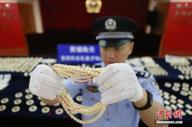 Mammoth ivory among large shipment seized in south China