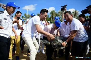 Sea turtle campaign launched by Chinese actor Liu Ye