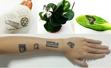 Chinese scientists develop graphene-based multifunctional electronic skin