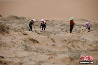 Desertification in northern China affected by global warming, say Chinese scientists
