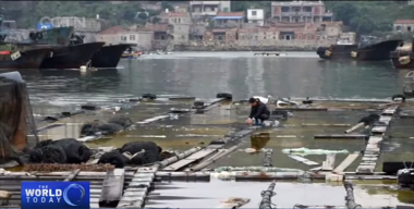 Chemical leak in Chinese fishing village hospitalises 52 residents