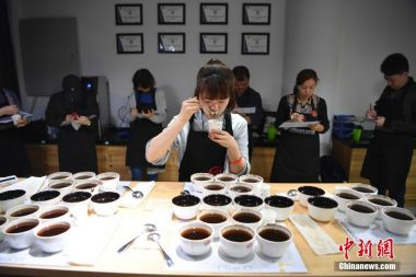Nestle and Chinese university join forces to improve coffee quality and yield