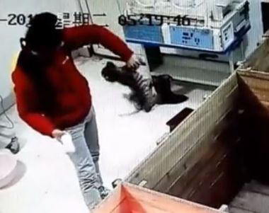 Zookeeper fired after torturing baby tiger