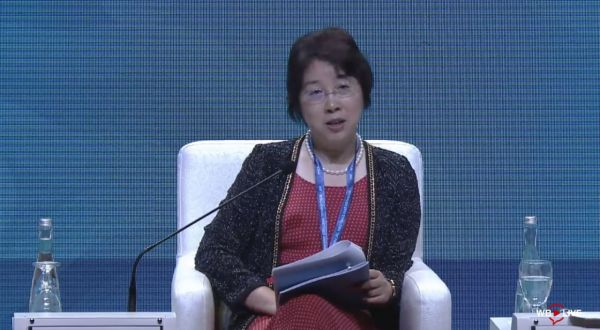 China will take care of Belt and Road debt issues, says vice-minister