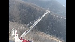 Glass-bottomed 'cracking' bridge opens in central China