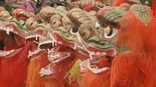 Introduction to the Chinese Lion Dance